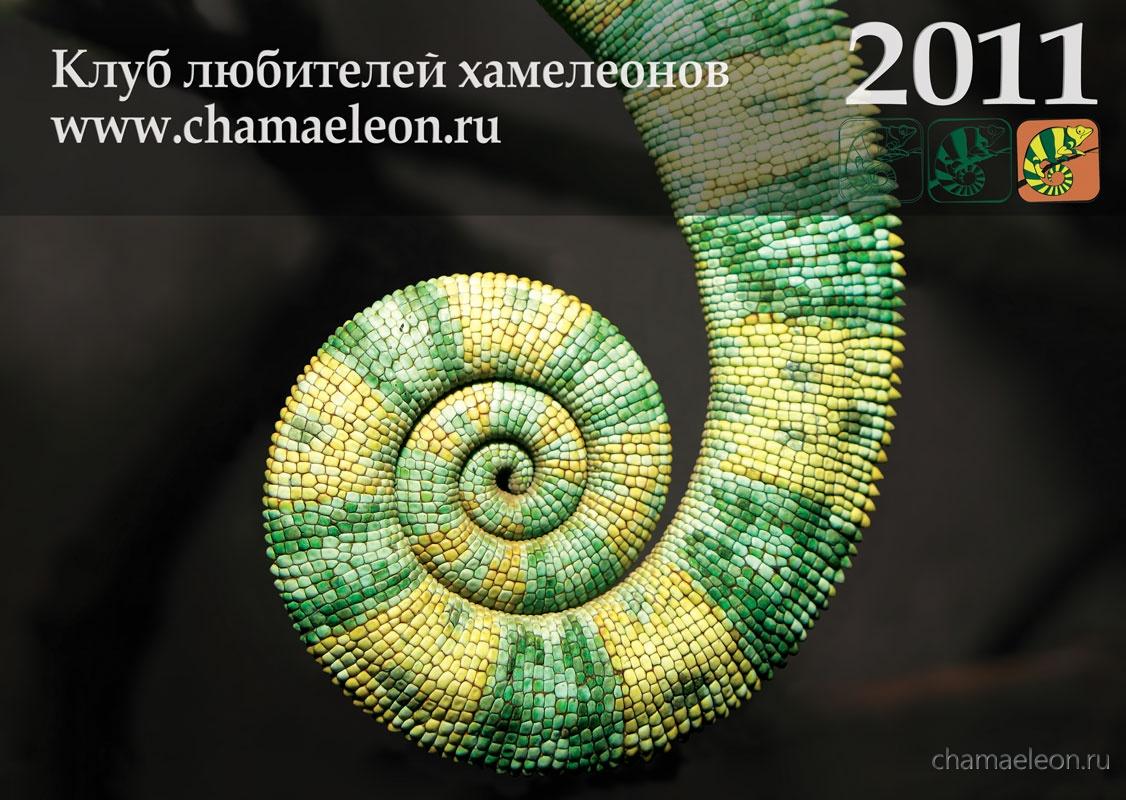 Обложка 2011